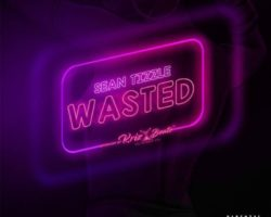 Wasted-Sean Tizzle