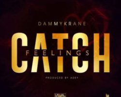 Catch Feelings – Dammy Krane
