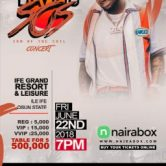 DAVIDO SON OF THE SOIL CONCERT