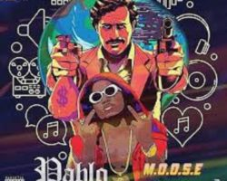 New Music: Moose – Pablo